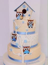 68 best images about cakes on pinterest owl cakes birthday