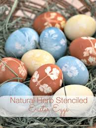 Frozen Easter Egg Decorating Kit by Natural Herb Stenciled Easter Eggs Upstate Ramblings