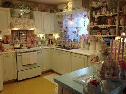 Shabby Chic Kitchen Cabinets Kitchen Style Shabby Chic Kitchen Pink Open Shelves Single Bowl