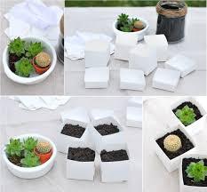 cadeau mariage invitã cadeau original et pas cher pour vos invités mariage des succulentes