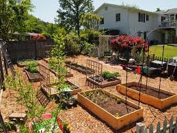 Raised Bed Vegetable Garden Design by Raised Bed Vegetable Garden Layout Plans Home Design Ideas