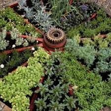small vegetable garden layout ideas inspirational 50 best small