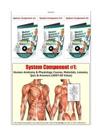 Anatomy And Physiology Chemistry Quiz Human Anatomy And Physiology Study Course