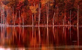 Indiana landscapes images Sunset madison indiana photography jpg