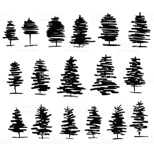 trees graphic hand drawn vector engraving doodle sketch isolated