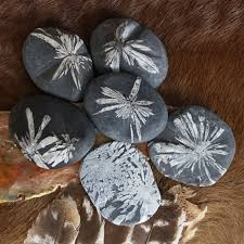 chrysanthemum palm stones for big picture purpose