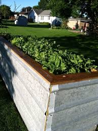 Raised Planter Beds by 40 Best Tin Roofing Raised Garden Beds Images On Pinterest