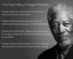 Morgan Freeman Memes - true facts about morgan freeman funny dank memes gag