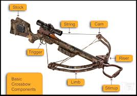amazon black friday crossbows a beginner u0027s guide to crossbows have you ever shot one