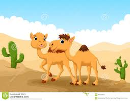 illustration of camels in desert stock illustration image 63035959