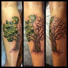 great tree pictures part 7 tattooimages biz