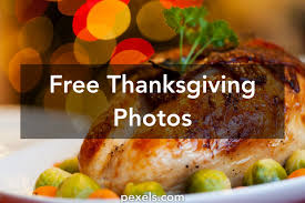 free stock photos of thanksgiving pexels
