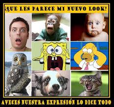 Videos Memes - v祗deos graciosos de dibujos memes imagines humor taringa