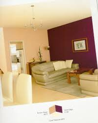 modern makeover and decorations ideas colour shade for living