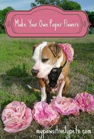 Make Your Own Paper Flowers - happy cinco de mayo create your own paper flowers for your dog u0027s