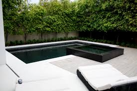 toorak 1 landscape design pinterest swimming pools black