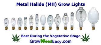 fluorescent light bulbs for growing weed mh hps grow light tutorial plus stealthy cheap way to exhaust
