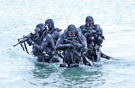 Navy Seal Wallpaper by Page 5 Navy Seal Photo Downloads Sealswcc Com