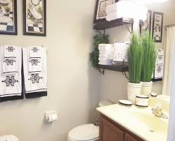 ideas to decorate my bathroom home design