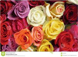 Colorful Roses Colorful Roses Stock Photography Image 4973642