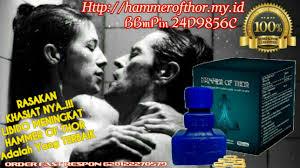 hammer of thor obat pembesar penis asli italia rekomendasi para