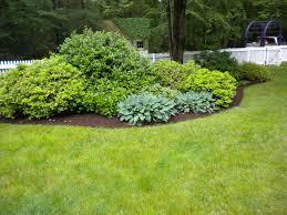 Bushes For Landscaping Garden Design Garden Design With Landscaping Plants Newsonair Org