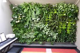 How To Make Vertical Garden Wall - ergonomic vertical indoor garden 48 vertical indoor garden nz