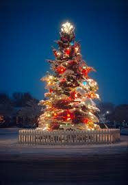 beautiful christmas tree decorations with outdoor christmas tree lit christmas tree in a neighborhood on a snowy evening