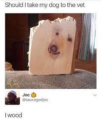 Best Dog Memes - the best dog memes memedroid