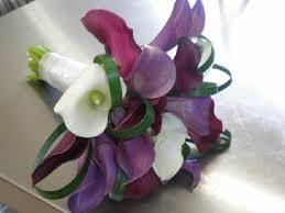 Purple Lily Flower Kim And Company