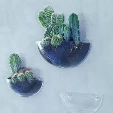 lovel mini wall terrarium by rowen u0026 wren notonthehighstreet com