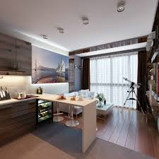 2 concepts of studio apartment decorating which makes elegant and