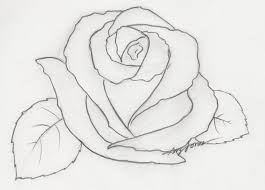 pencil drawn roses angel drawing of pencil sketches rose tattoo