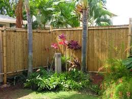 bamboo fence panels bunnings best house design bamboo fence