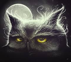 owl and the moon posters u0026 prints by lukas brezak