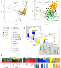Genetic Map Of Europe by Reconstructing The Population Genetic History Of The Caribbean