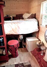 big dogs living with you in a tiny house the tiny house idea