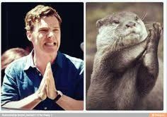 Cumberbatch Otter Meme - so sweet tommy benedict cumberbatch reunited again at the