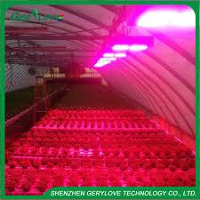 advanced platinum led grow lights advanced platinum series p900 p600 p450 p300 led grow light veg hommum