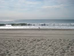 long beach island summer rentals lbi rental lbi summer rentals