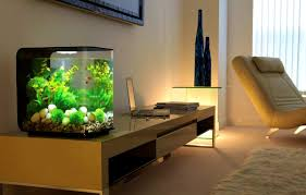 fish decorations for home interior magnificent amusing modern fish tanks pictures design