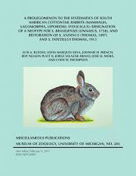 a prolegomenon to the systematics of south american cottontail