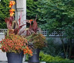 5 simple garden container ideas your easy garden