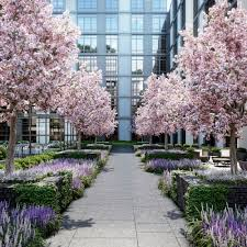 long island city u0027s amenity packed arc will rent from 1 800 month
