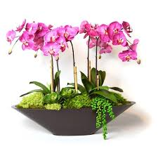 faux orchids fuchsia faux orchids in large metal boat fu free shipping today