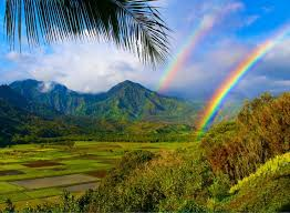 hawaii travel bureau 101 best hawaii images on hawaiian islands destinations