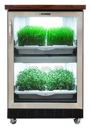 Urban Herb Garden Ideas - 1427 best garden ideas u0026 tips images on pinterest garden ideas