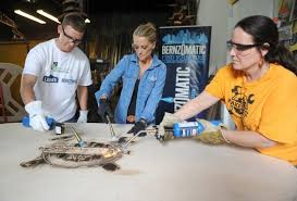 What House Does Nicole Curtis Live In Nicole Curtis In Rehab Addict Charmy Women