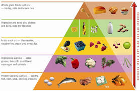atkins diet phase two ongoing weight loss or owl for short