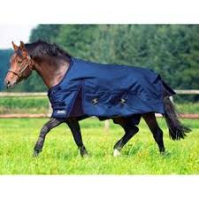 Outdoor Rugs For Horses Rugs Outdoor Rug